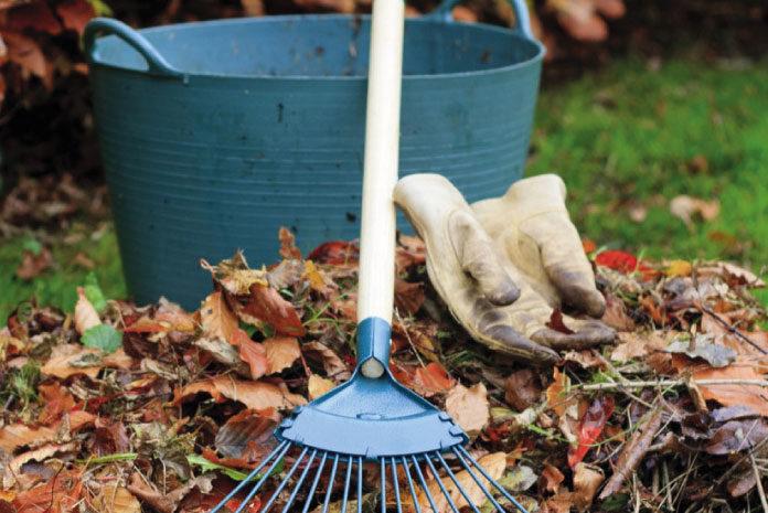 Wiosenne porządki w ogrodzie – jak przywrócić wygląd ogrodu po zimie?