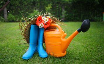 Wiosenne porządki w ogrodzie